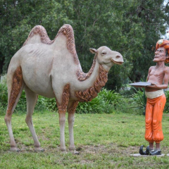 Camel With Arabian