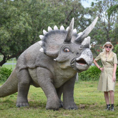 Extra Large Triceratops