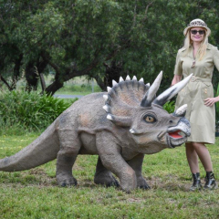 Large Triceratops